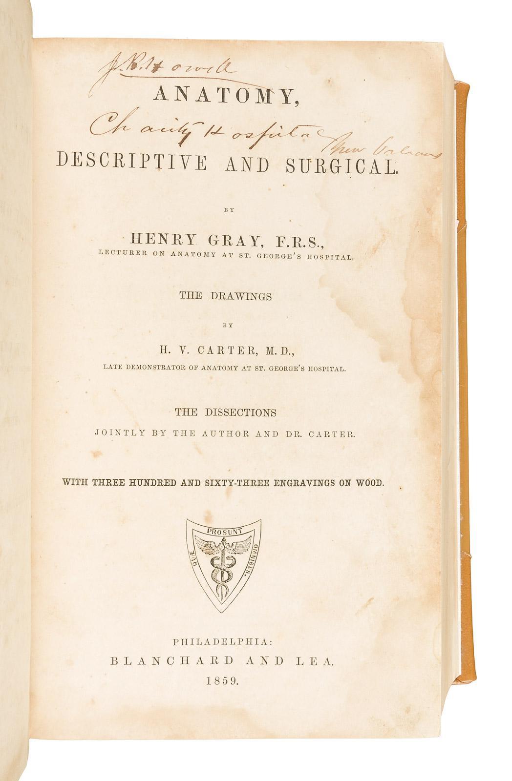 Anatomy Descriptive And Surgical Price Estimate 3000 5000
