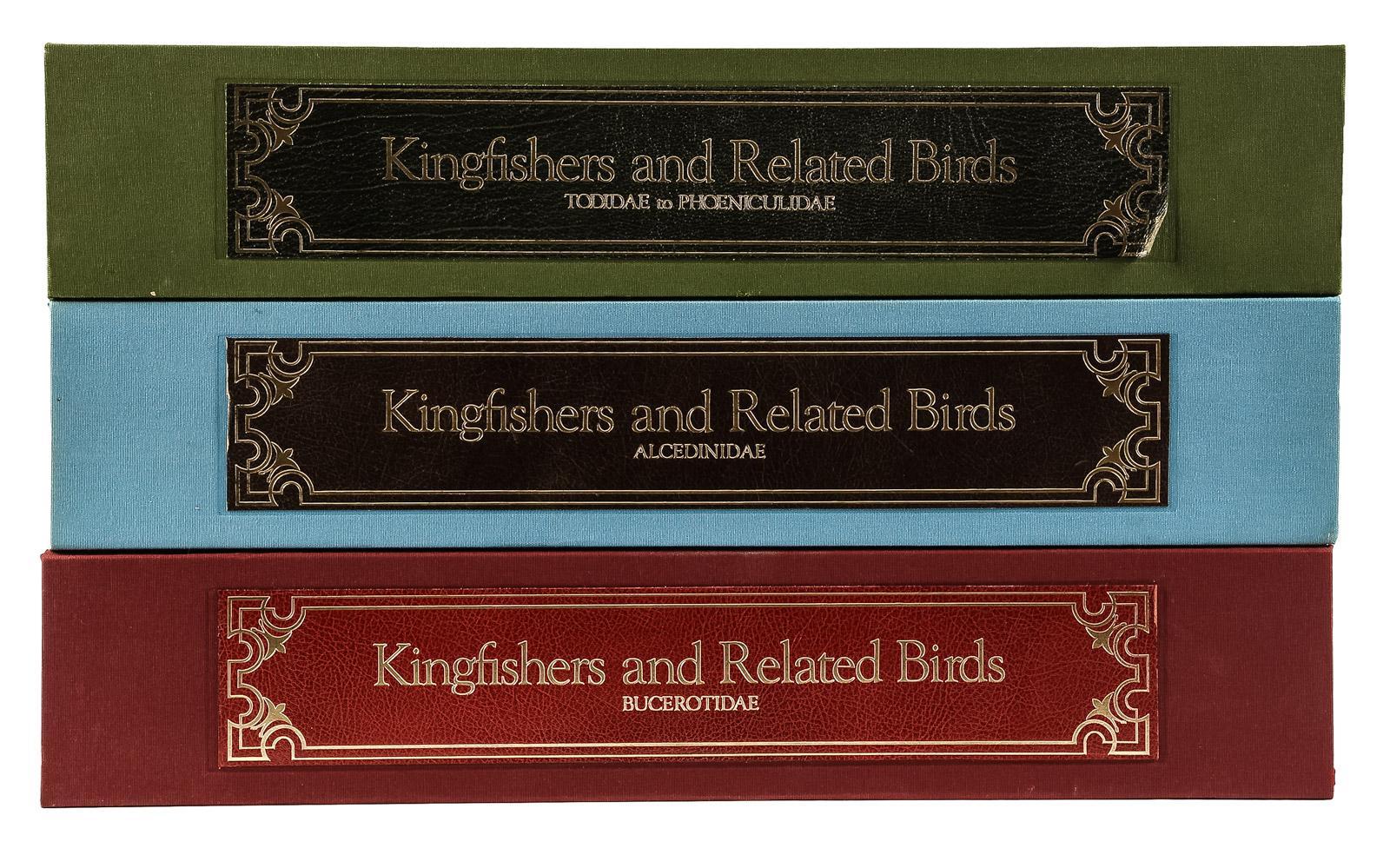 Kingfisher 8X Madera Nidificaci/ón Siguiente Caja Pajarera Peque/ño P/ájaros Herrerillo Petirrojo Sparrow