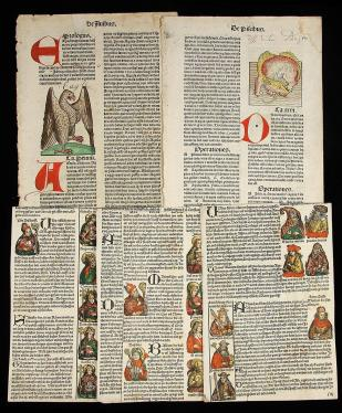 10 hand-colored and rubricated leaves and 1389 French document